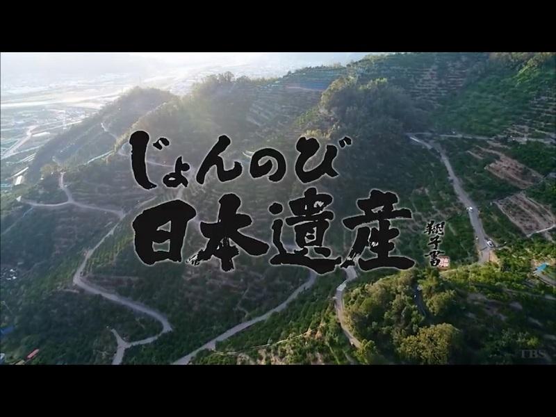 じょんのび日本遺産の画像 p1_30