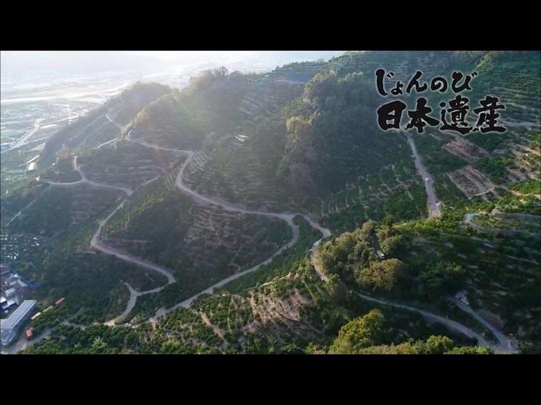じょんのび日本遺産の画像 p1_8